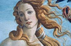 venus by botticelli - discover tuscan artists
